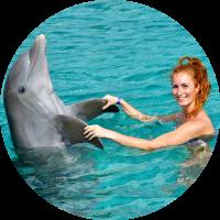Mariska van Wijk dolfijn